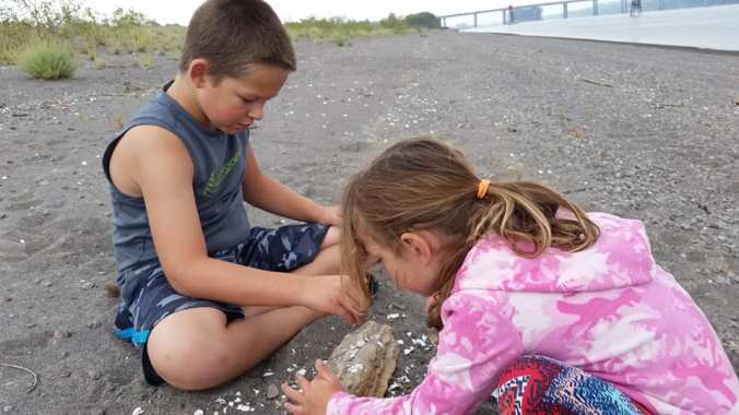 Boy and girl sitting near each other on a sandy beach playing with shells and driftwood
