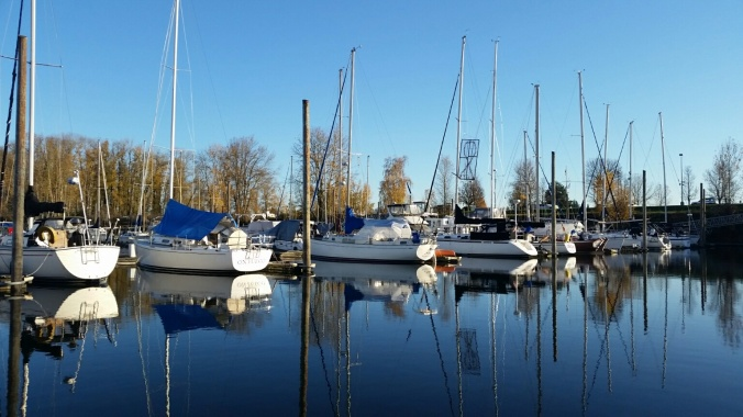 Cold and clear - a peaceful day at the marina in the PNW