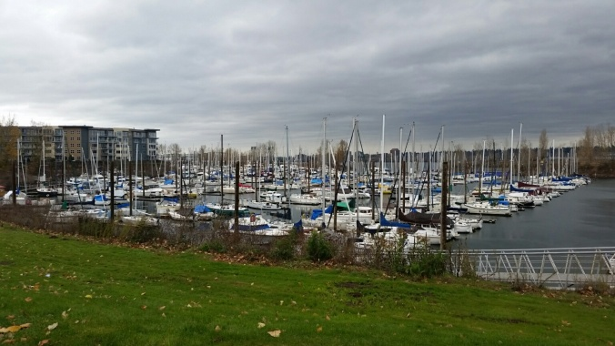 The view overlooking the marina in Portland OR