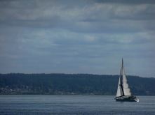 SV Muse sails across the Puget Sound
