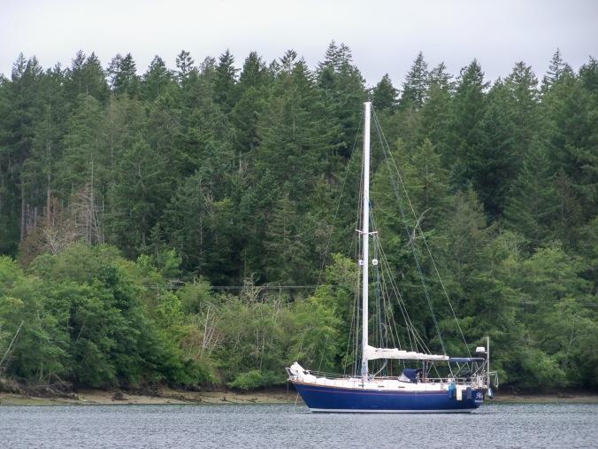 Mosaic resting at anchor in Oro Bay - June 2019