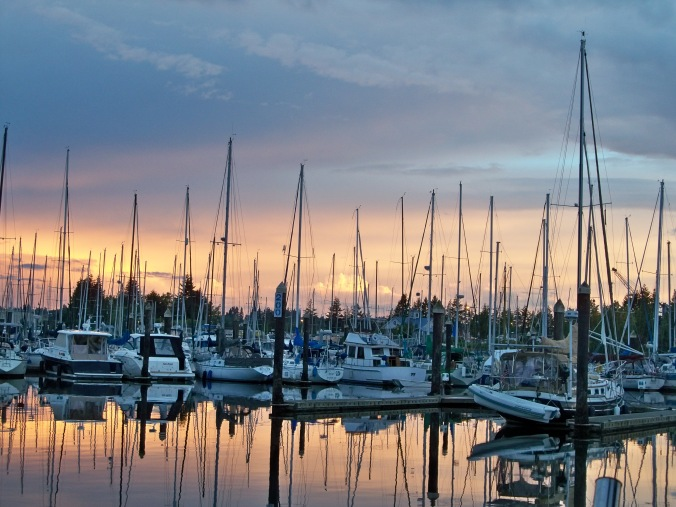 Swantown Marina Review - Olympia WA