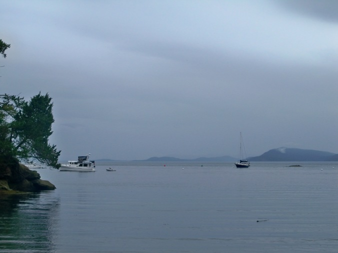 Looking out at Mosaic in Shallow Bay on Sucia Island